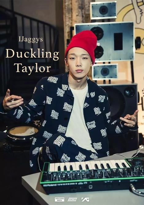 duckling taylor